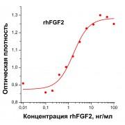 rhFGF2, фактор роста фибробластов человека-2, рекомбинантный белок, 10 мкг