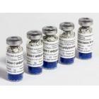 Диски с индикаторными препаратами