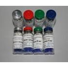 Диски с противогрибковыми препаратами