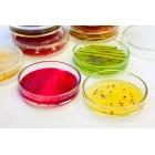 Питательные среды для микробиологии