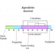 Апротинин, для биохимии, AppliChem, 10 мг