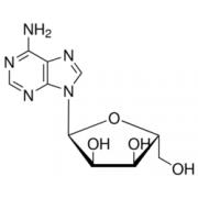 α-Adenosine ≥85% Sigma A8157
