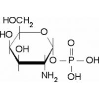 &#945;-<SC>D</SC>-Galactosamine 1-phosphate ~95&#37;, powder Sigma G5134