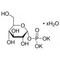 &#945;-<SC>D</SC>-Glucose 1-phosphate dipotassium salt hydrate BioXtra, &#8805;98&#37; Sigma G6750