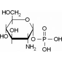 &#945;-<SC>D</SC>-Glucosamine 1-phosphate Sigma G9753
